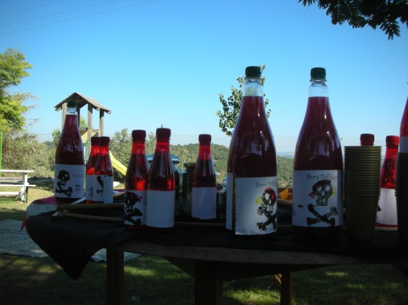 משקאות בסגנון שודדי ים