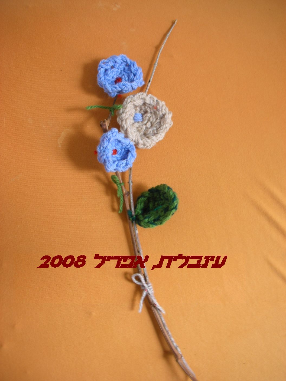 סריגת אצבעות (קרושה) שטיח מגן דוד- הדגמה שורה 4 ותחילת שורה 5 - תופרת חלומות - תפוז בלוגים