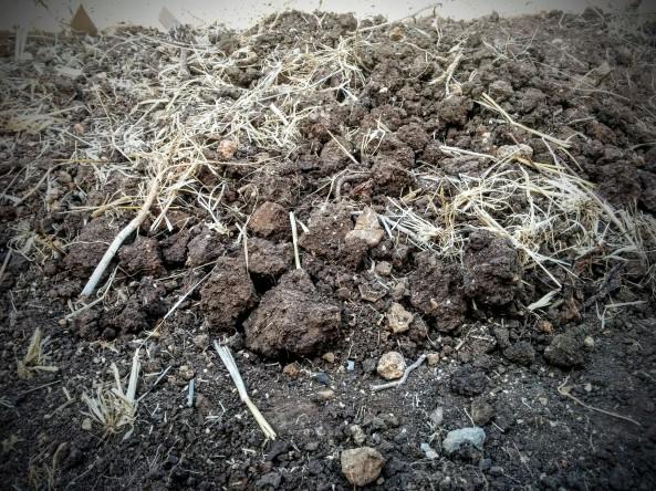 כיסוי באדמה שנחפרה